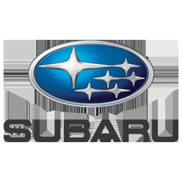 Subari